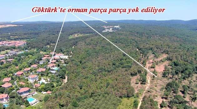 GÖKTÜRK ORMANLARI TALAN EDİLİYOR