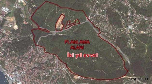 Kuzey ormanları talanı devam ediyor