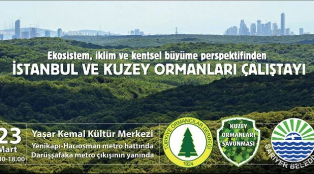 İstanbul ve Kuzey Ormanları Çalıştayı