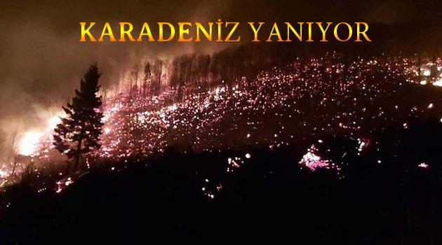Karadeniz BÖLGESİ YANIYOR ...