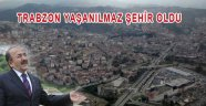 Trabzon'un Ulaşım Envanteri Nedir?